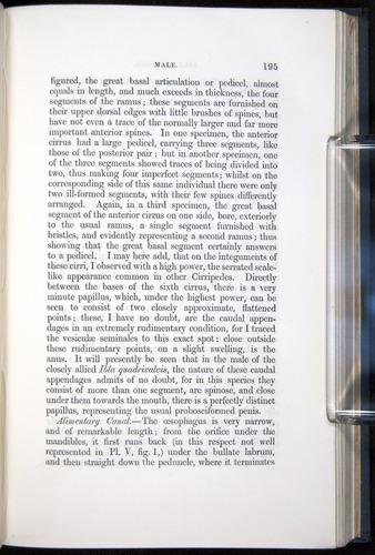 Image of Darwin-F339.1-1851-195