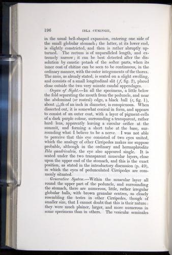 Image of Darwin-F339.1-1851-196