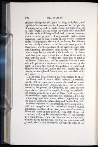 Image of Darwin-F339.1-1851-202