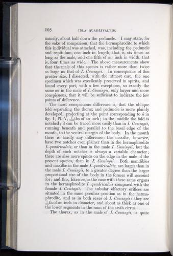 Image of Darwin-F339.1-1851-208