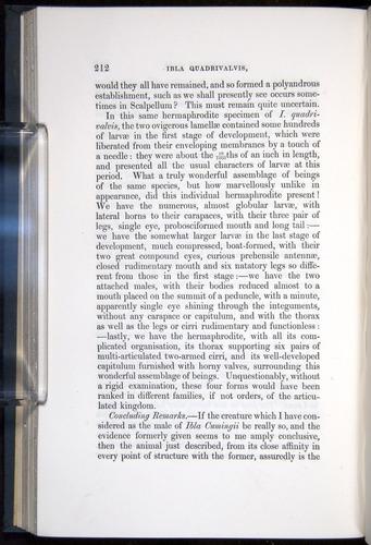 Image of Darwin-F339.1-1851-212