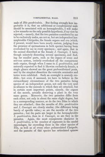 Image of Darwin-F339.1-1851-213