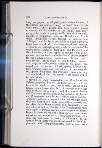 Image of Darwin-F339.1-1851-216