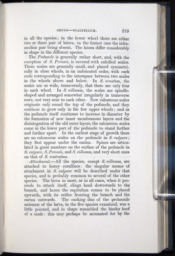 Image of Darwin-F339.1-1851-219