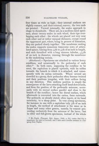 Image of Darwin-F339.1-1851-226