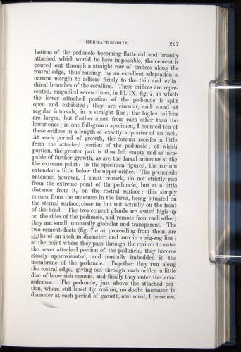 Image of Darwin-F339.1-1851-227