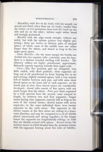 Image of Darwin-F339.1-1851-229
