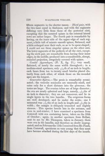 Image of Darwin-F339.1-1851-230