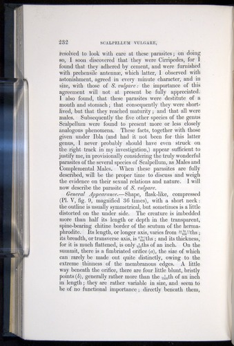 Image of Darwin-F339.1-1851-232