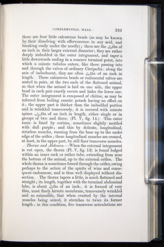 Image of Darwin-F339.1-1851-233