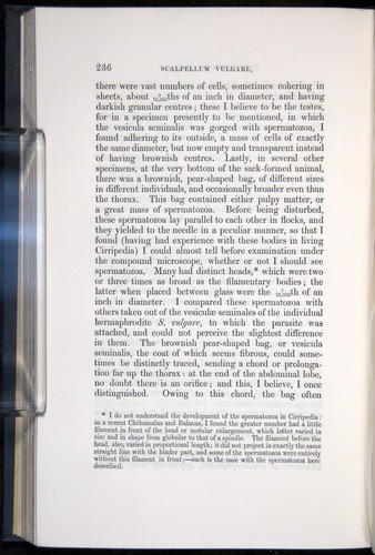 Image of Darwin-F339.1-1851-236
