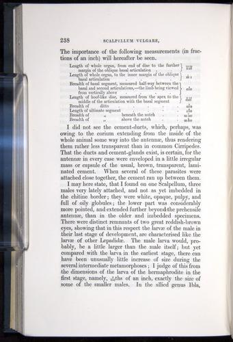 Image of Darwin-F339.1-1851-238
