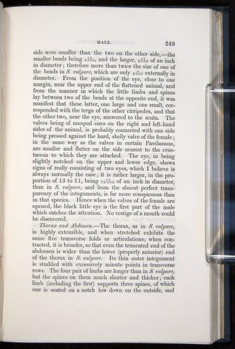 Image of Darwin-F339.1-1851-249