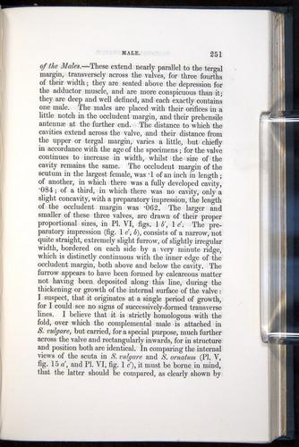 Image of Darwin-F339.1-1851-251
