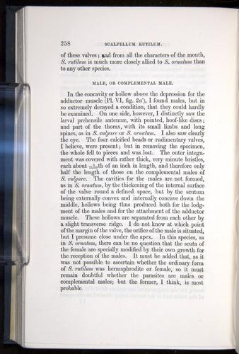 Image of Darwin-F339.1-1851-258