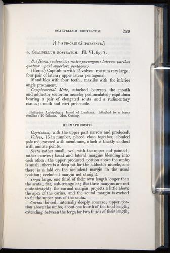Image of Darwin-F339.1-1851-259