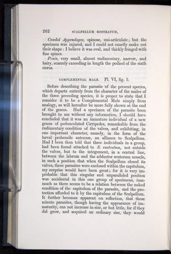 Image of Darwin-F339.1-1851-262