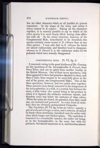 Image of Darwin-F339.1-1851-270