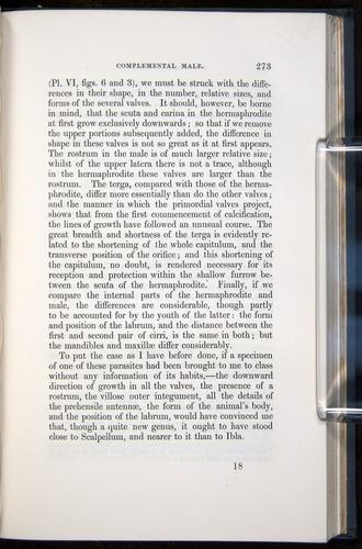 Image of Darwin-F339.1-1851-273