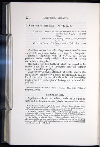 Image of Darwin-F339.1-1851-274