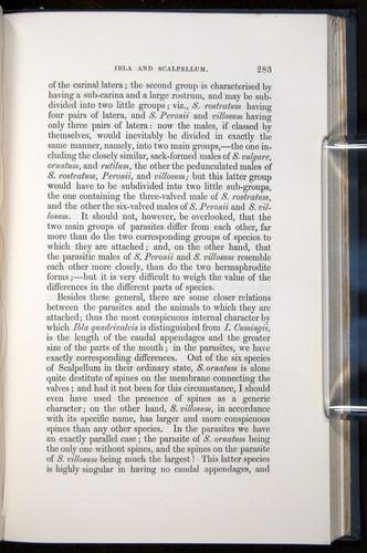 Image of Darwin-F339.1-1851-283