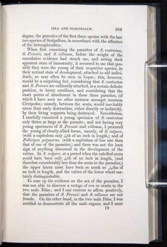 Image of Darwin-F339.1-1851-289