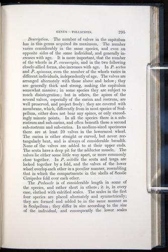 Image of Darwin-F339.1-1851-295