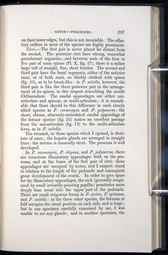 Image of Darwin-F339.1-1851-297