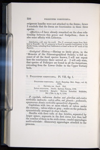 Image of Darwin-F339.1-1851-298