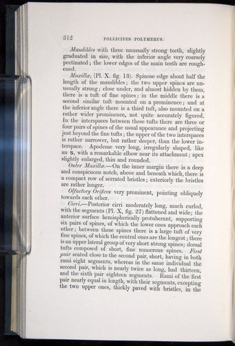 Image of Darwin-F339.1-1851-312