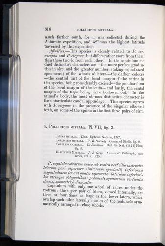 Image of Darwin-F339.1-1851-316