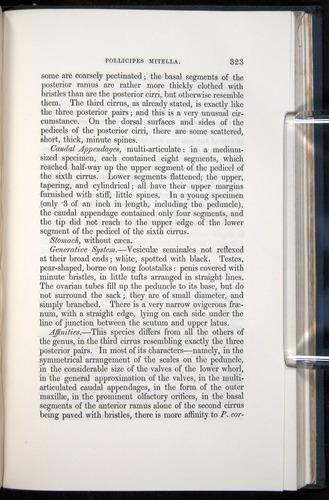 Image of Darwin-F339.1-1851-323