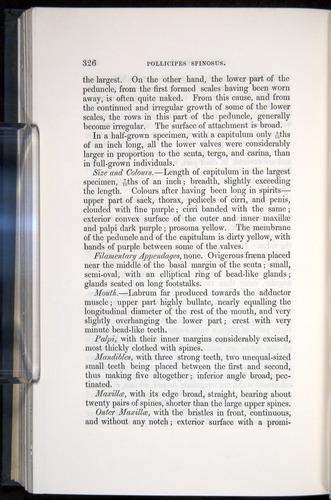 Image of Darwin-F339.1-1851-326