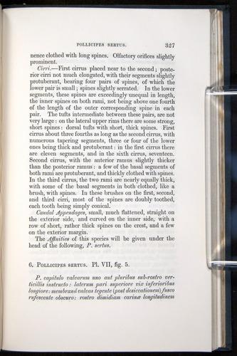 Image of Darwin-F339.1-1851-327