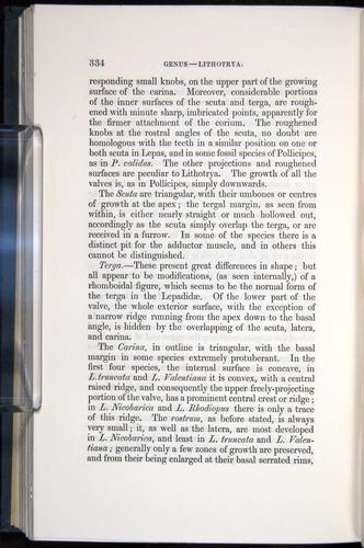 Image of Darwin-F339.1-1851-334