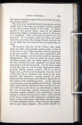 Image of Darwin-F339.1-1851-335