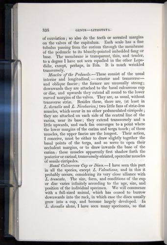 Image of Darwin-F339.1-1851-338