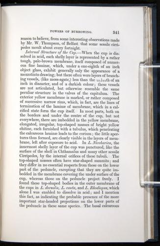 Image of Darwin-F339.1-1851-341