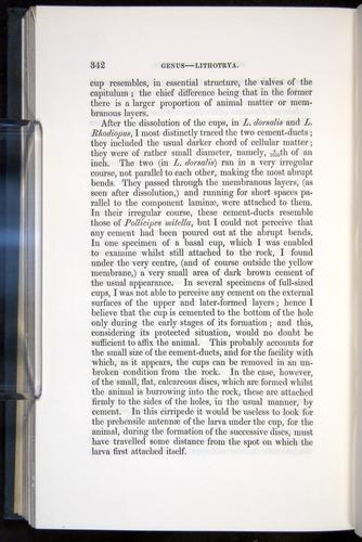 Image of Darwin-F339.1-1851-342
