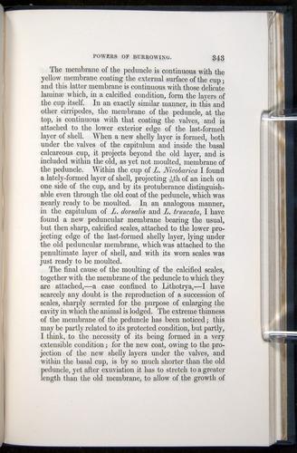Image of Darwin-F339.1-1851-343