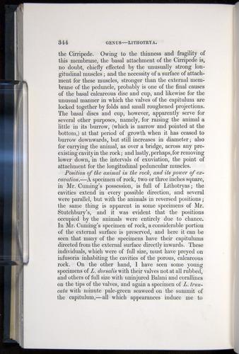 Image of Darwin-F339.1-1851-344