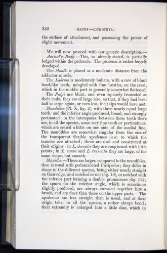 Image of Darwin-F339.1-1851-348