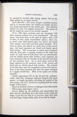 Image of Darwin-F339.1-1851-349