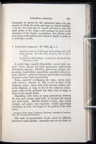 Image of Darwin-F339.1-1851-351