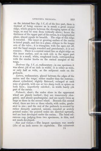 Image of Darwin-F339.1-1851-369
