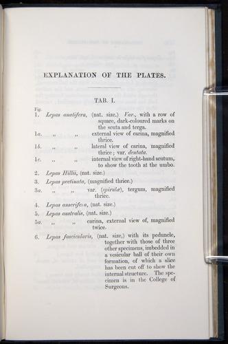 Image of Darwin-F339.1-1851-377