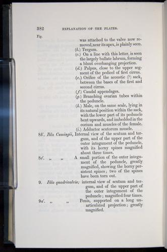 Image of Darwin-F339.1-1851-382
