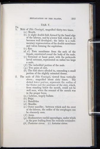 Image of Darwin-F339.1-1851-383
