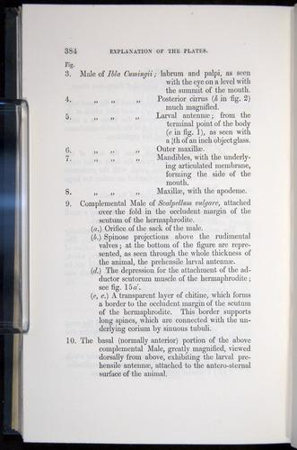 Image of Darwin-F339.1-1851-384