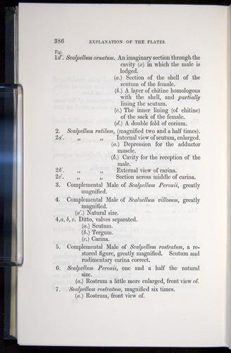 Image of Darwin-F339.1-1851-386